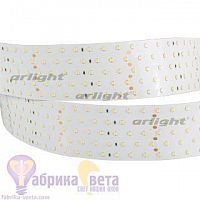 Лента RT 2-2500 24V Day4000 5x2 (2835, 875 LED, LUX)